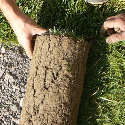 Si vous êtes pressé, le gazon en plaques permet d'obtenir une belle pelouse homogène et verdoyante directement après la pose.