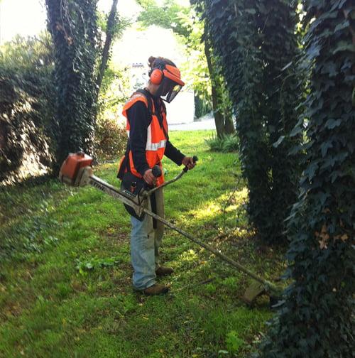 SOLEV dans le Vaucluse, entretien de jardin particulier, prévention des incendie en PACA