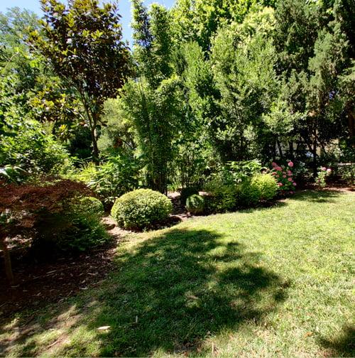 SOLEV, entretien de jardin, particulier, arbres et massifs