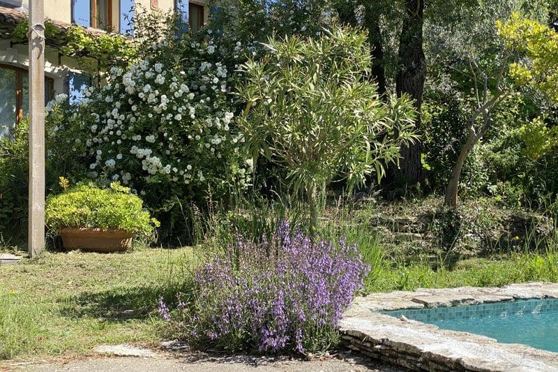 SOLEV, création et entretien de jardin pour les particuliers