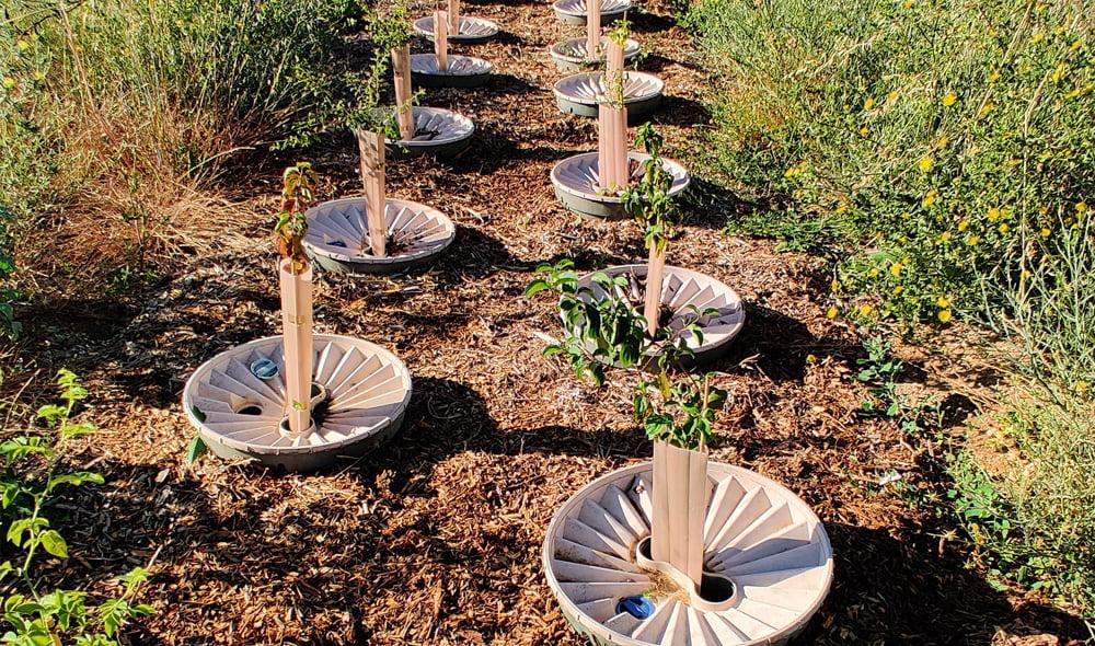 La transition écologique pour laquelle nous œuvrons nécessite des techniques et des solutions innovantes que SOLEV développe et met en œuvre. Nos défis sont multiples : économie d'eau, perméabilité des sols et lutte contre leur érosion.
