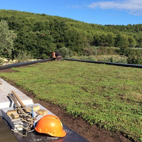 SOLEV, toit végétal pour professionnels et collectivités