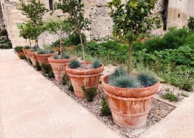 Aménagement de jardin – Avignon