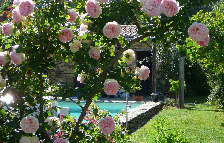 SOLEV en PACA, entretiens ponctuels et spécifiques ou entretien annuel de jardin particulier