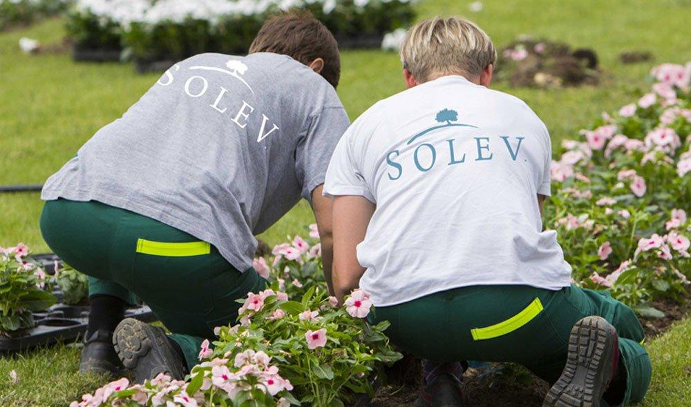 SOLEV est reconnue Entreprise d'Insertion par l'Activité Économique par la DIRECCTE PACA