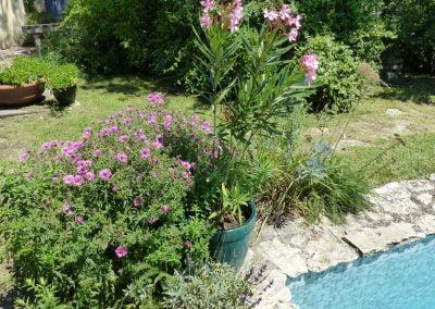 Plantations - Jardin Pernes-les-Fontaines